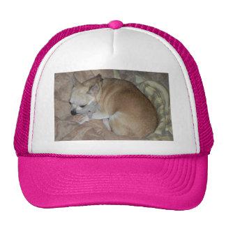 Peanut Trucker Hat – Loving Mommy