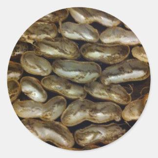 Peanuts stolen from Monkeys - Organic pattern Round Stickers