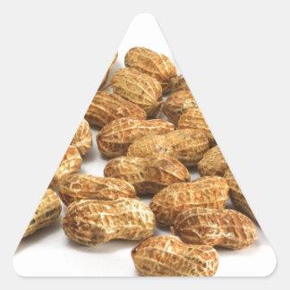 Peanuts Triangle Sticker