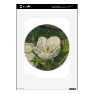 Pear Blossom Dream iPad 3 Skins