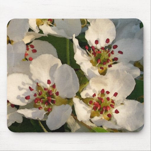 Pear Blossoms Watercolor Style Mouse Pads