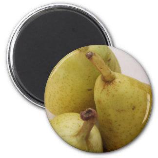 Pear Fruit Magnet