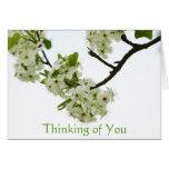 Pear Tree Branch Card