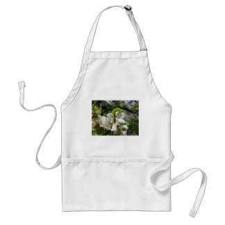 Pear tree branches with blossoms adult apron