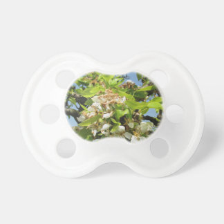 Pear tree branches with blossoms pacifier