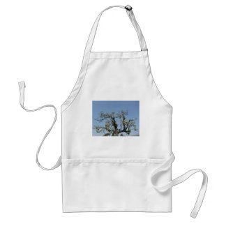 Pear tree with blossoms against the blue sky adult apron