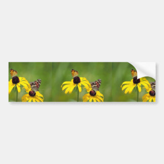 Pearl crescent and American painted lady butterfli Car Bumper Sticker