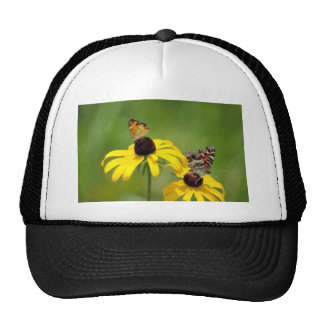 Pearl crescent and American painted lady butterfli Hat
