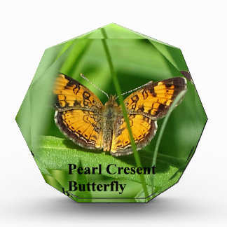 Pearl Crescent Butterfly Award