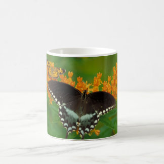 Pearl Crescent Butterfly Coffee Mug
