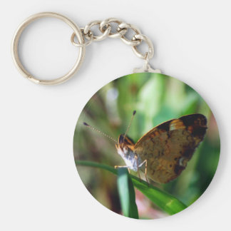 Pearl Crescent Butterfly keychain