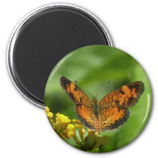 Pearl Crescent Butterfly Magnet