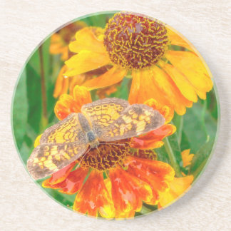 Pearl Crescent Butterfly on Sneezeweed Drink Coaster