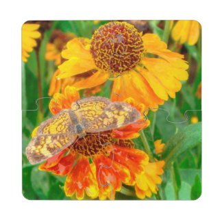 Pearl Crescent Butterfly on Sneezeweed Puzzle Coaster