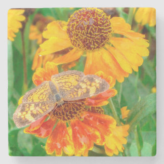 Pearl Crescent Butterfly on Sneezeweed Stone Coaster