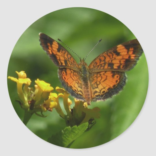 Pearl Crescent Butterfly sticker