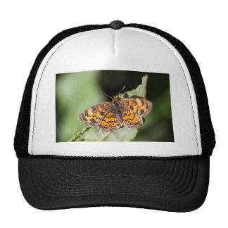 Pearl Cresent Butterfly- Phyciodes tharos Trucker Hat