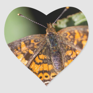 Pearl Cresent Butterfly- Phyciodes tharos Heart Sticker