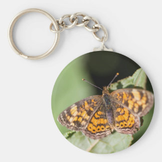 Pearl Cresent Butterfly- Phyciodes tharos Key Chains