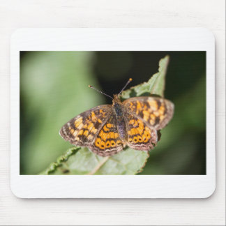 Pearl Cresent Butterfly- Phyciodes tharos Mousepads