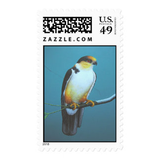 Pearl Kite Stamps