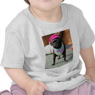 Pearl - Pug and Boston Terrier Mix Breed Photo-08 Tees