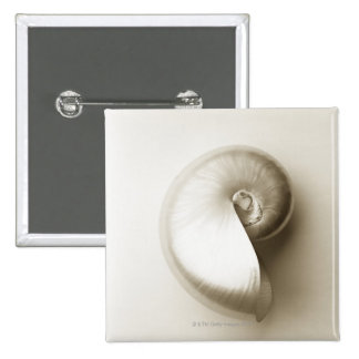 Pearlised nautilus sea shell 2 pinback buttons