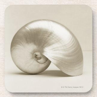 Pearlised nautilus sea shell drink coaster
