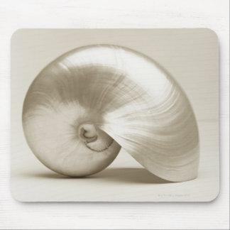 Pearlised nautilus sea shell mouse pad
