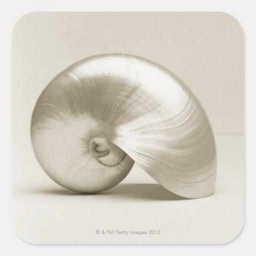 Pearlised nautilus sea shell square sticker