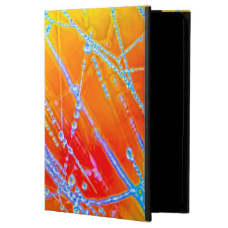Pearls of Water in a Spider's Web Cover For iPad Air