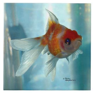 Pearlscale orange Goldfish Tile
