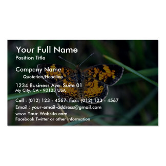 Pearly crescentspot business cards