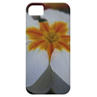 Pearly Primrose iPhone SE/5/5s Case