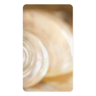 Pearly White Sea Shell Marine Nature Business Card