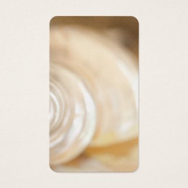 Beach Themed Pearly White Sea Shell Marine Nature Business Card