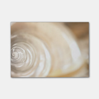 Pearly White Sea Shell Marine Nature Post-it® Notes