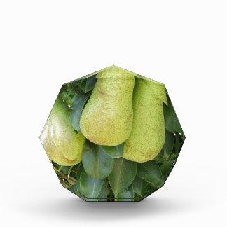 Pears on tree branches acrylic award