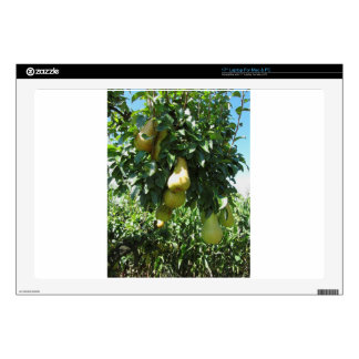 Pears on tree branches laptop skin