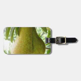 Pears on tree branches bag tags