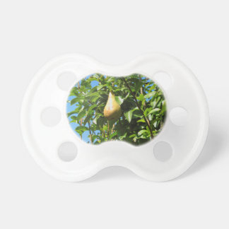 Pears on tree branches pacifier