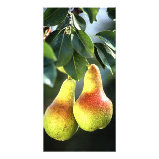 Pears Personalized Photo Card