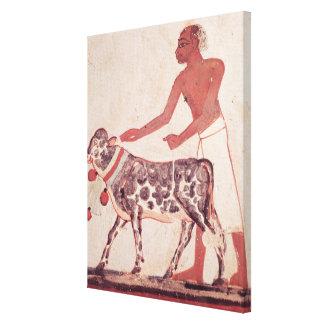 Peasant leading a cow to sacrifice canvas print