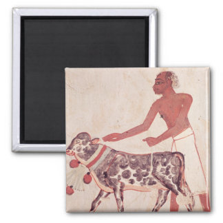Peasant leading a cow to sacrifice magnet