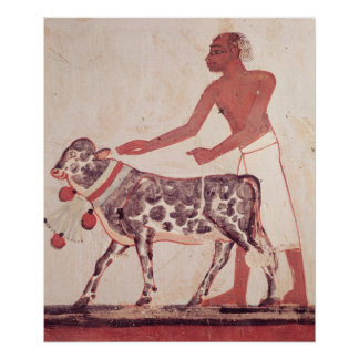 Peasant leading a cow to sacrifice poster