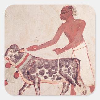 Peasant leading a cow to sacrifice square sticker
