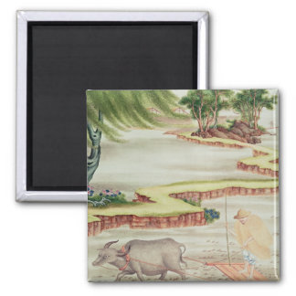 Peasant working in the paddy fields 2 inch square magnet