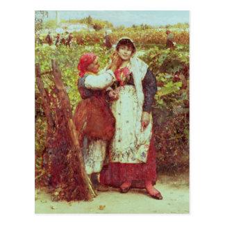 Peasants in a vineyard postcard