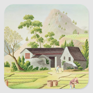 Peasants in the Paddy Fields Sticker