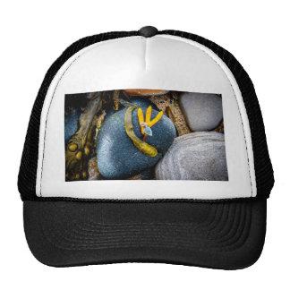 Pebbles and Seaweed Trucker Hat